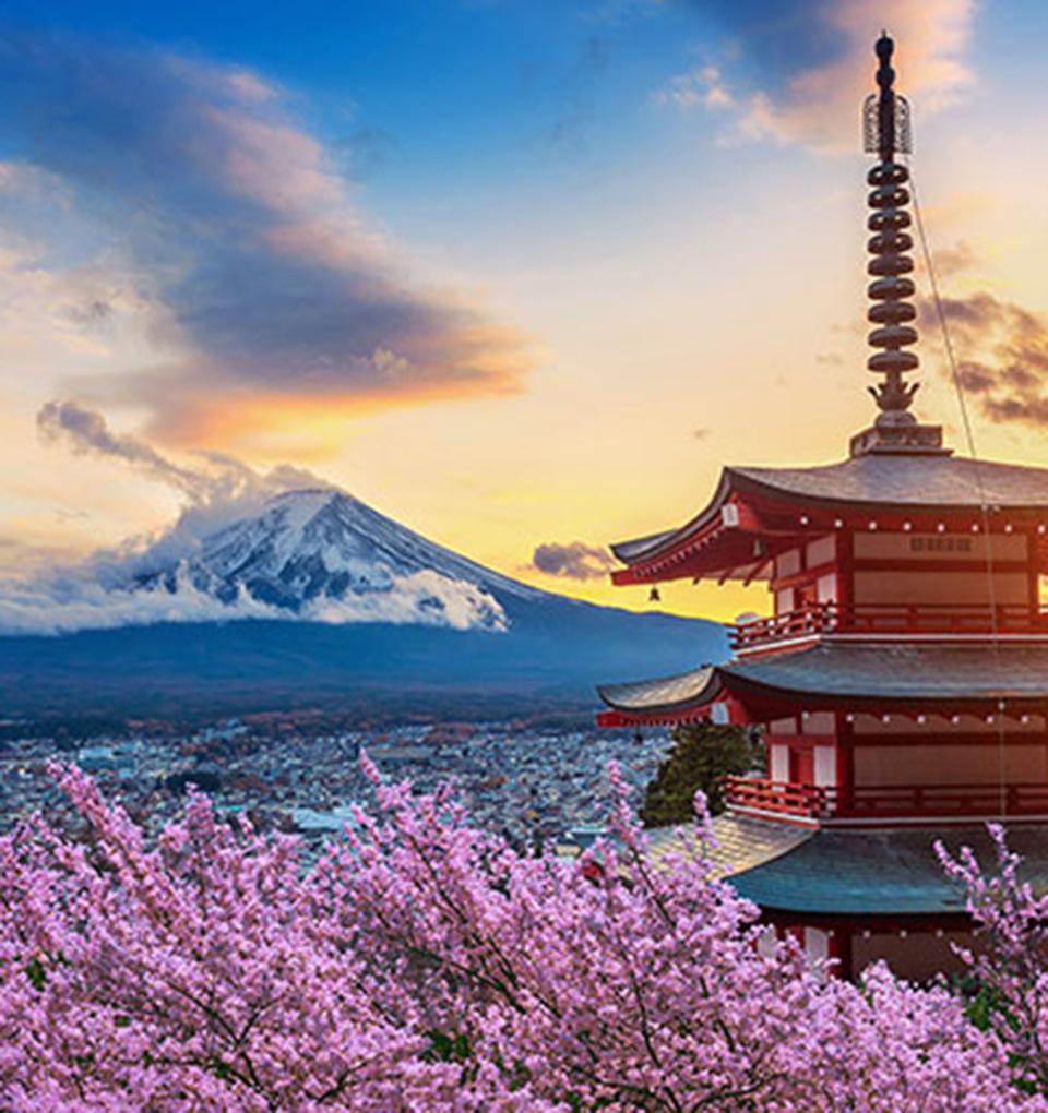 「日本のいいもの」総合プロジェクト